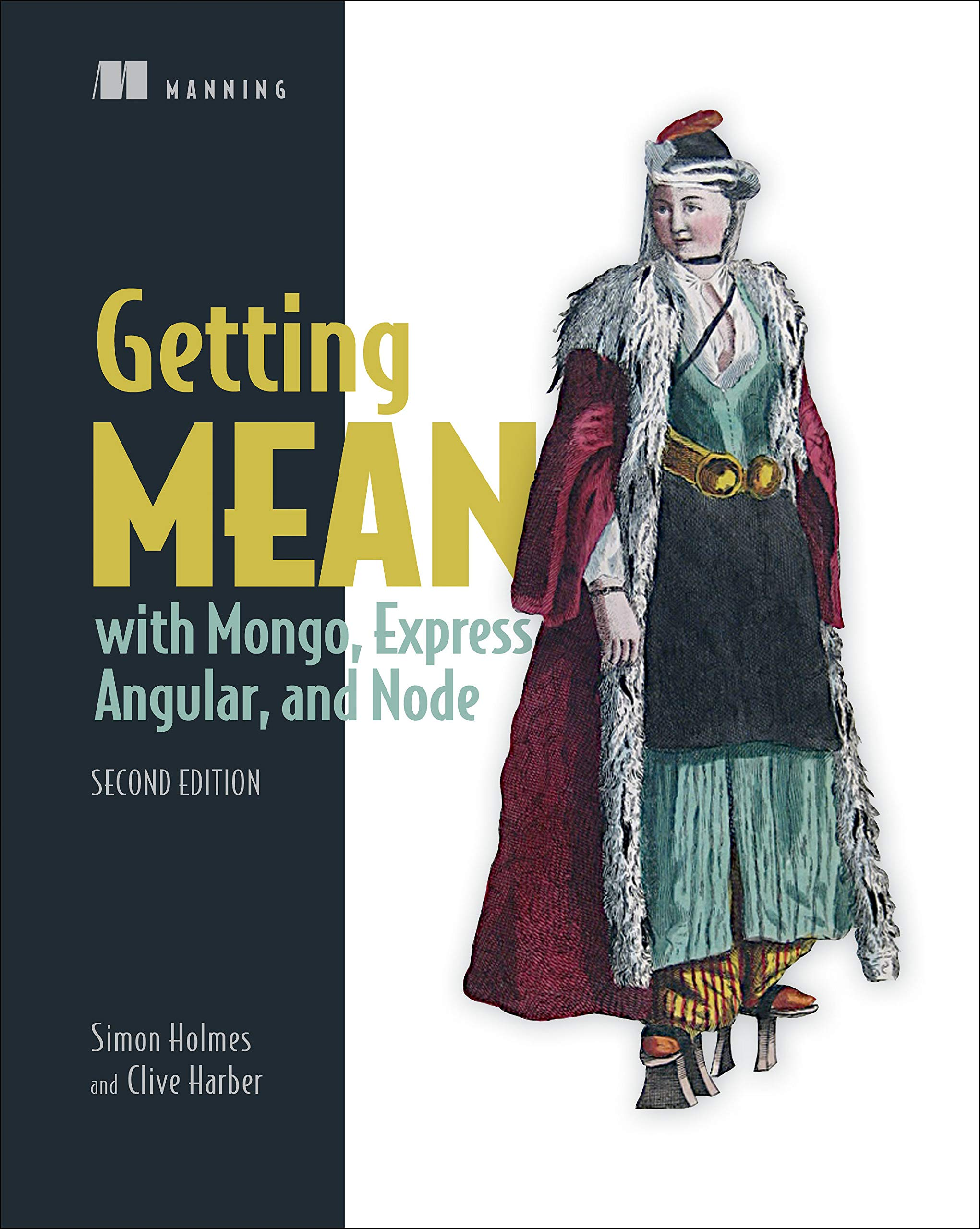 JS/Andular/Mongo IT book cover